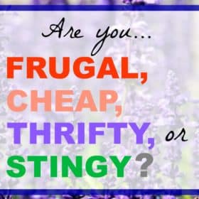 This post doesn't call you names! But you will find out which category you fall into: frugal, cheap, thrifty, or stingy.
